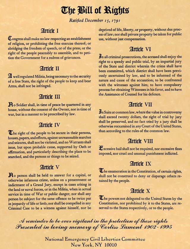 What Is Protected Under The Bill Of Rights Best 2017. Bill Of Rights Printable And Folder The Wise Nest. Worksheet. How A Bill Bees A Law In Congress Worksheet At Clickcart.co